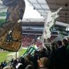 Mainz – VfL: Große Rotation – 6 Neue