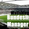 Bundesliga-Manager: Die Wolfsblog-Liga
