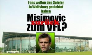 Misimovic zurück zum VfL Wolfsburg?