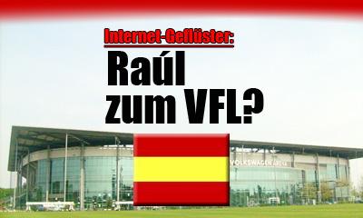 Raul zum VfL?