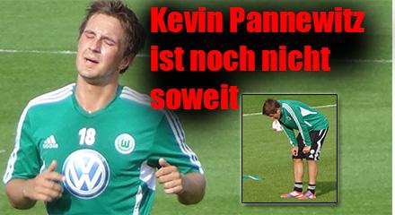 1Pannewitz0