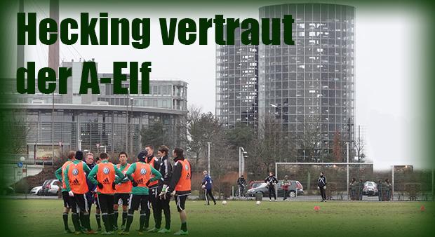 Vfl Wolfsburg Hecking