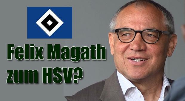 Magath Hsv