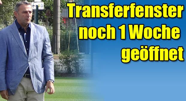 Transfers-Allofs