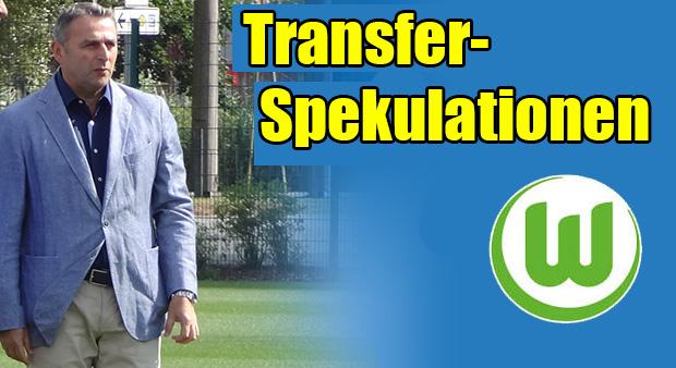 Transfers-Allofs3