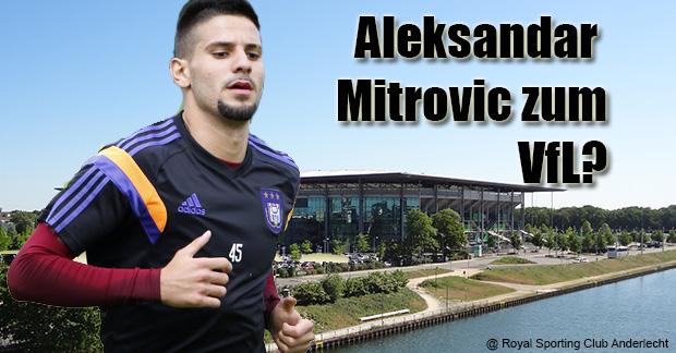 Aleksandar-Mitrovic3