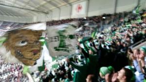 VfL-Fans