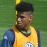 Onel Hernandez2