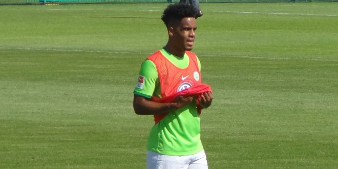 Daniel-Didavi-VfL-Wolfsburg
