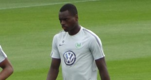 Nany Landry Dimata VfL Wolfsburg