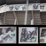 VfL-Stars-Stadion-Arena