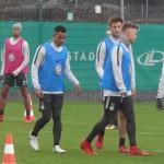 Daniel-Didavi-Tisserand-VfL Wolfsburg
