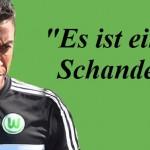 Luiz-Gustavo-VfL Wolfsburg